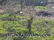 Продается земельный участок в 12 соток в поселкe Шувелян